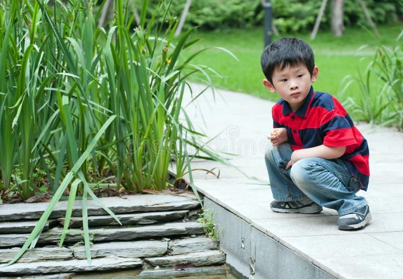 Curious Boy Stock Image