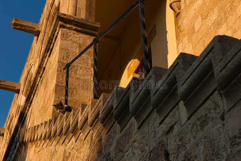 Curious cat Grand Master Palace Rhodes stock images