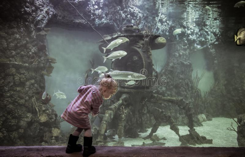 Curious child exploring underwater world with sunk bathyscaphe ship among floating fish in futuristic and fantastic big marine aqu royalty free stock photography