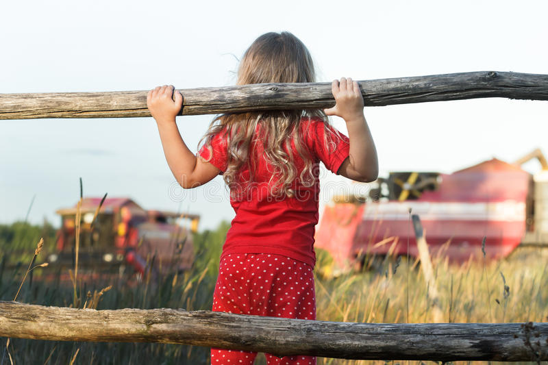 Curious farm girl wearing polka dot kids pans looking at field with working red combine harvesters. Curious farm girl is wearing polka dot kids pans looking at royalty free stock photo