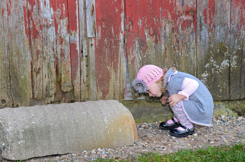 Curious little girl royalty free stock photo