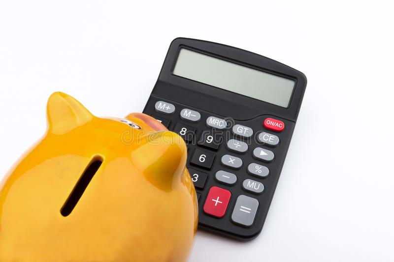 Curious piggy bank (Piggy bank and calculator). Piggy bank looking at a calculator royalty free stock photography