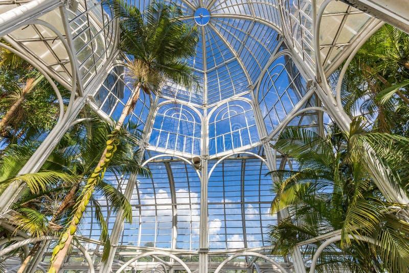 CURITIBA, PARANA/BRAZIL - 26 DE DICIEMBRE DE 2016: Jardín botánico en un día soleado fotografía de archivo