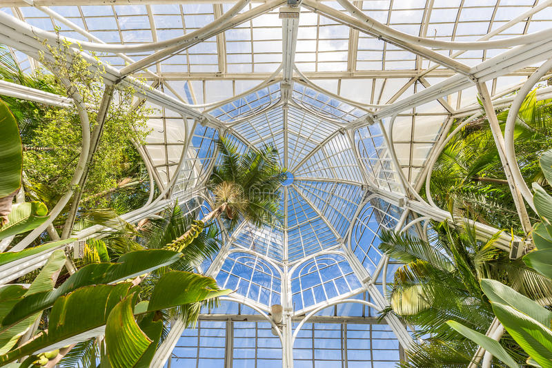 CURITIBA, PARANA/BRAZIL - 26 DE DICIEMBRE DE 2016: Jardín botánico en un día soleado imagen de archivo libre de regalías