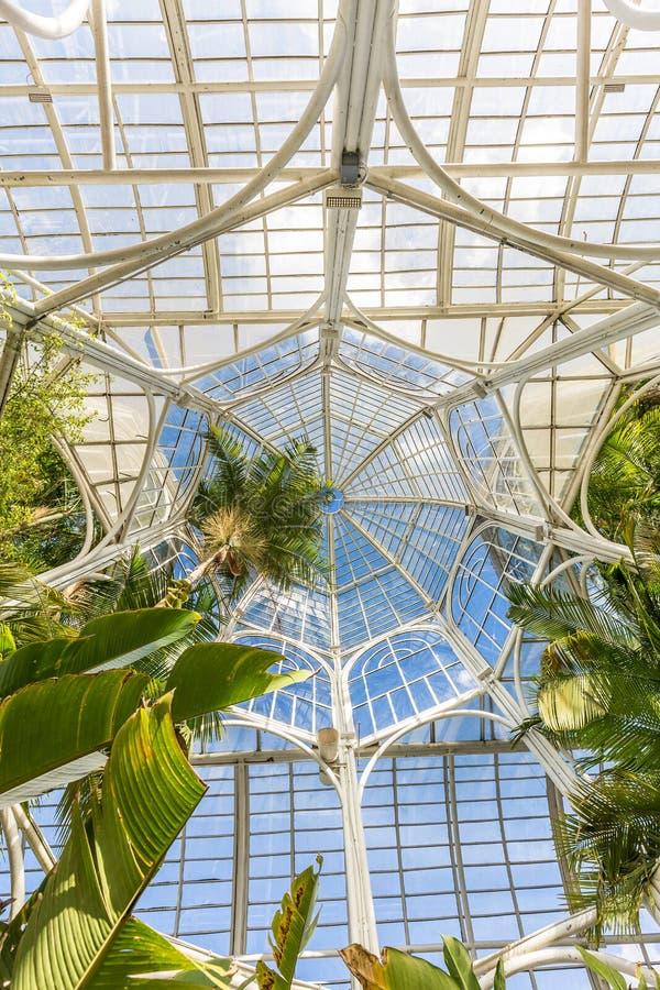 CURITIBA, PARANA/BRAZIL - GRUDZIEŃ 26 2016: Ogród Botaniczny w słonecznym dniu zdjęcie stock
