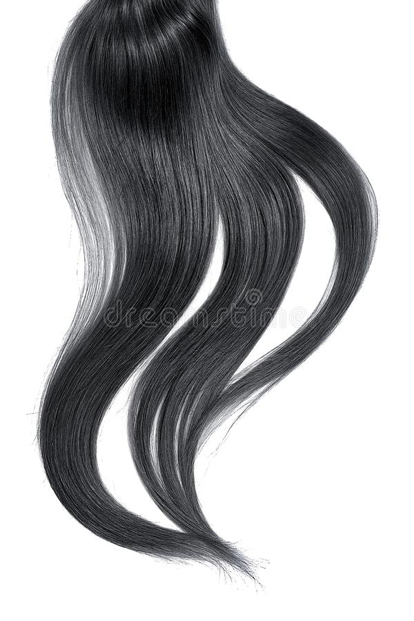 Curl of natural black hair on white background. Natural healthy hair isolated on white background. Detailed clipart for your collages and illustrations stock images
