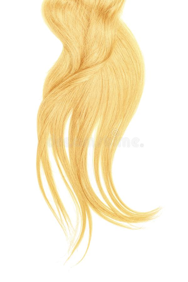 Curl of natural blond hair, isolated on white background. Natural healthy hair isolated on white background. Detailed clipart for your collages and illustrations stock photo