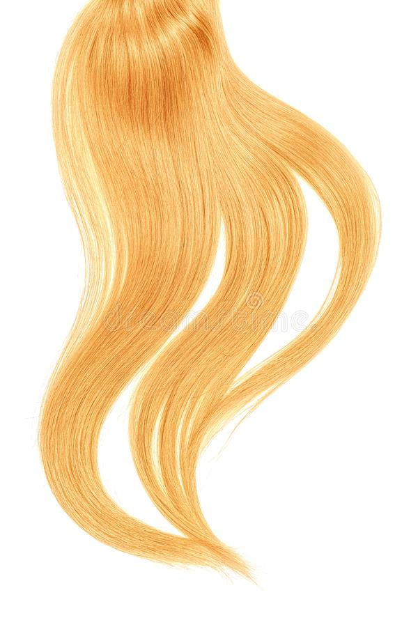 Curl of natural blond hair on white background. Natural healthy hair isolated on white background. Detailed clipart for your collages and illustrations stock images