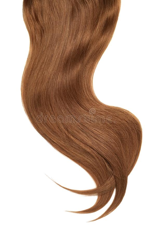 Curl of natural brown dark hair on white background. Wavy ponytail stock photo