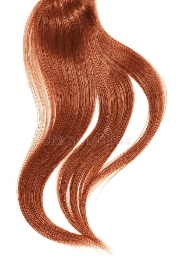 Curl of natural henna hair on white background. Natural healthy hair isolated on white background. Detailed clipart for your collages and illustrations royalty free stock images