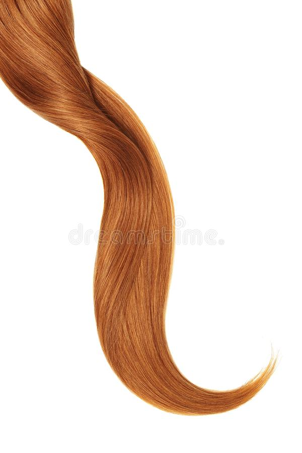 Curl of natural red hair, isolated on white background. Natural healthy hair isolated on white background. Detailed clipart for your collages and illustrations royalty free stock image