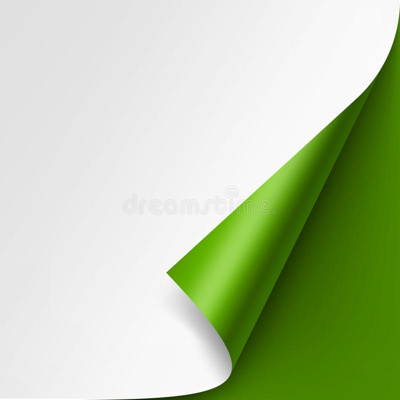 Curled corner of White paper on Green Background. Vector Curled corner of White paper with shadow Mock up Close up Isolated on Green Background vector illustration