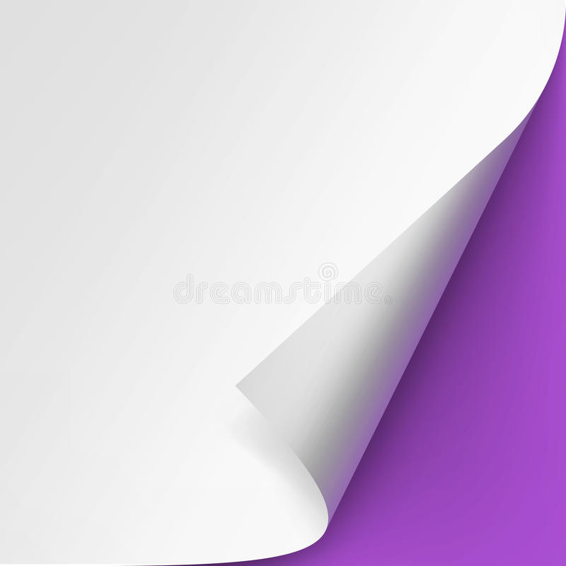 Curled corner of White paper on Violet Purple Background. Vector Curled corner of White paper with shadow Mock up Close up on Violet Purple Lilac Background royalty free illustration