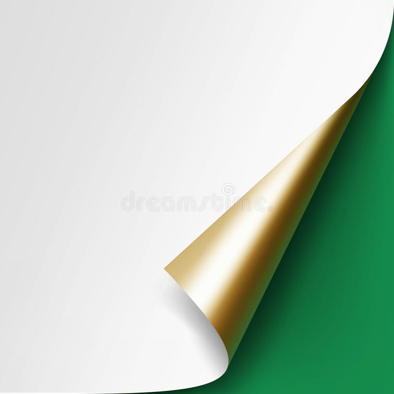 Curled Golden corner of White paper on Green Background. Vector Curled Golden corner of White paper with shadow Mock up Close up on Green Background royalty free illustration