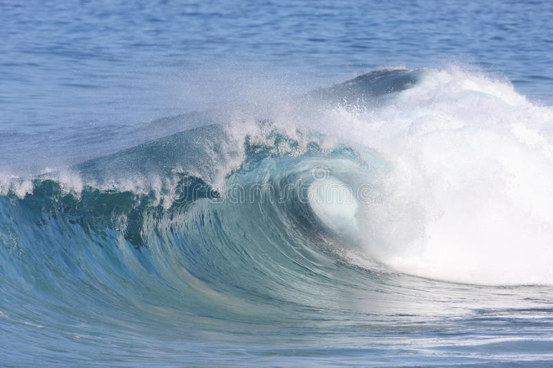 Curling wave stock images
