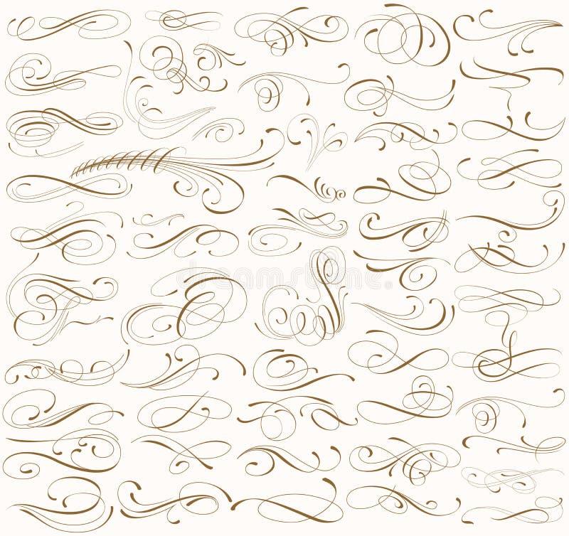 CURLS_big_set vector illustration
