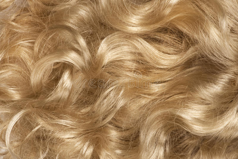 Curly blond hair royalty free stock image