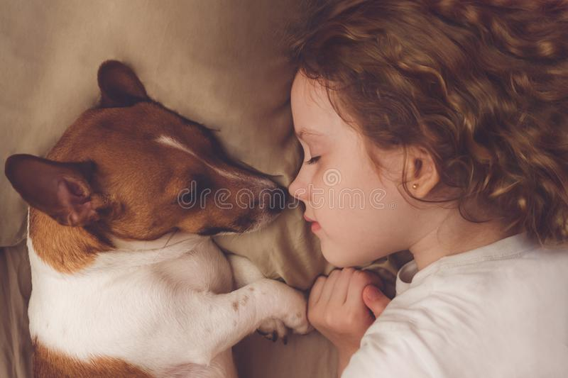 Curly girl and jack russell dog is sleeping in night. Sweet curly girl and jack russell dog is sleeping in night stock image