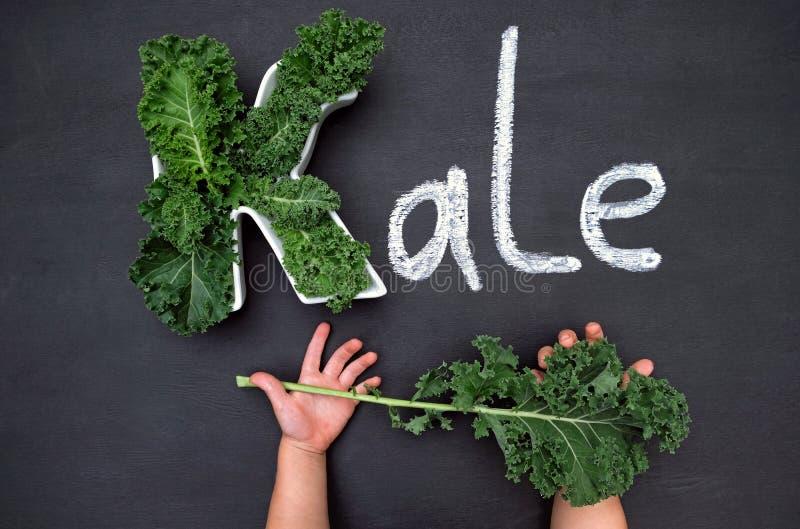 Curly-leaf kale cabbage inside letter K shaped plate, chalk inscription KALE on blackboard, child`s hands holding fresh greens. royalty free stock images