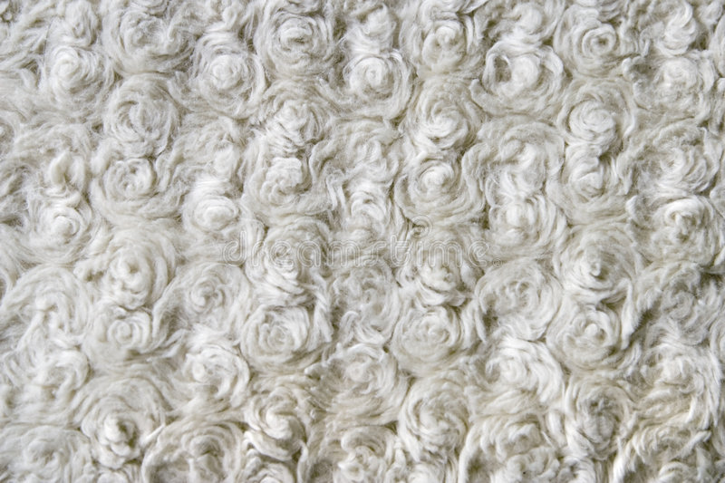 Curly wool texture close up stock photo