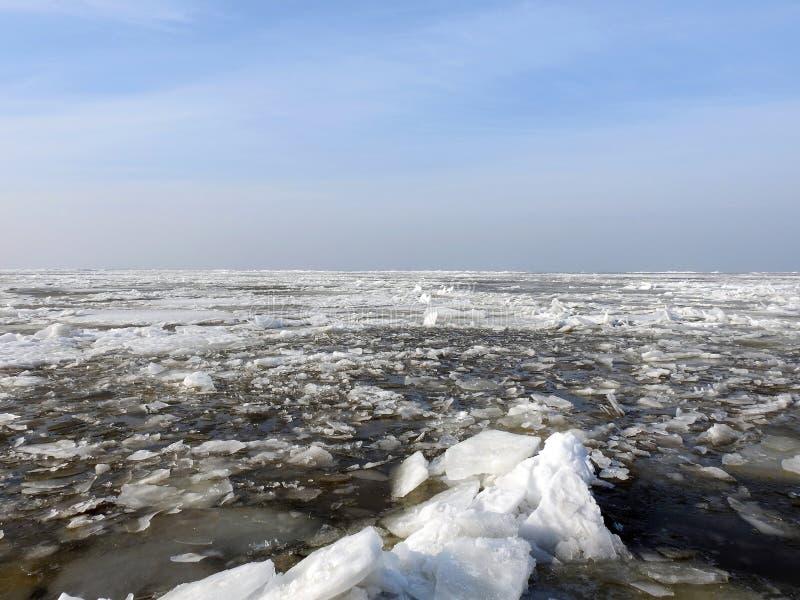 Curonian плюет весной с частями льда, Литвой стоковое фото rf