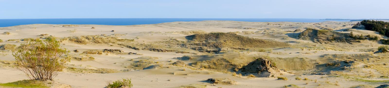 Curonian Spit. Dunes on the Curonian Spit royalty free stock photography