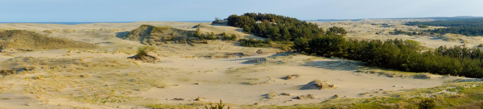 Curonian Spit. Dunes on the Curonian Spit royalty free stock images