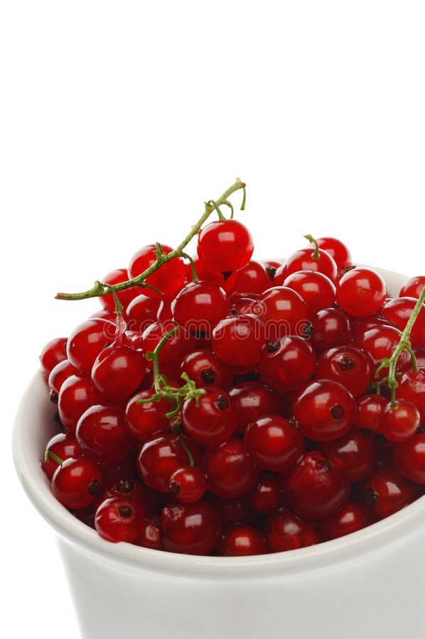 Currant. Red currant on white stock photos