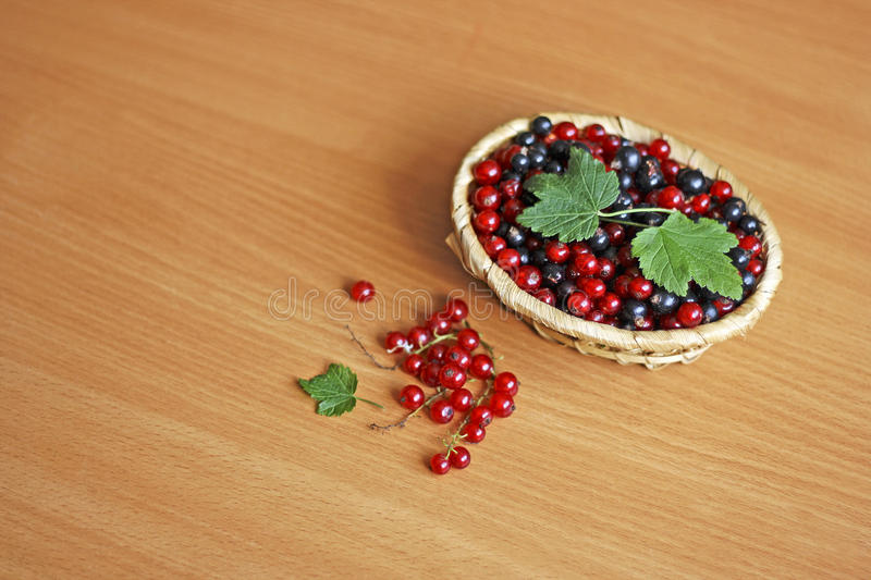 Currant berries in a basket. Berry background. Black berries and red currants are in light brown wicker basket on a wooden surface royalty free stock photos
