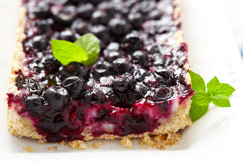 Currant Blueberry Pie. With Oatmeal Crust stock images