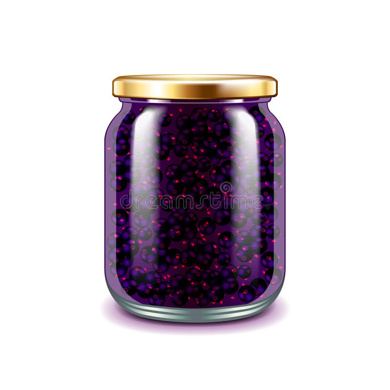 Currant jam on white vector. Currant jam on white photo-realistic vector illustration stock illustration