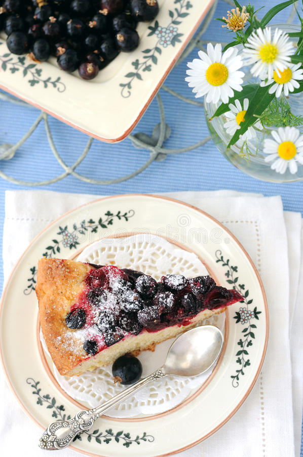 Currant pie. A piece of a home made currant pie royalty free stock images