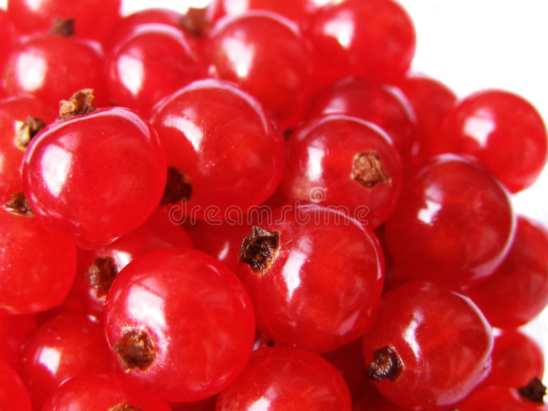 Currant - Sweet And Sour Red Berries Stock Photo