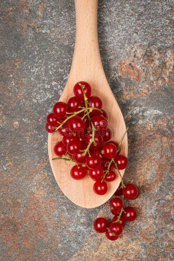 Currants in a wooden spoon royalty free stock photography