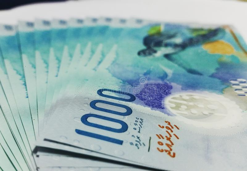 Currency 1000 MVR royalty free stock photo