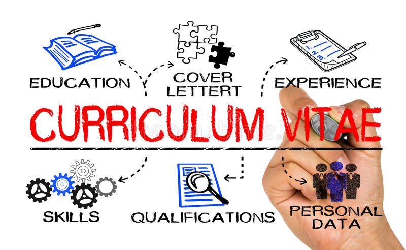 Curriculum vitae concept. Drawn on white background royalty free stock photos