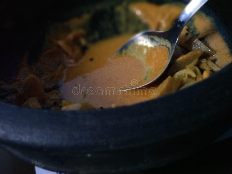 curry zdjęcie stock
