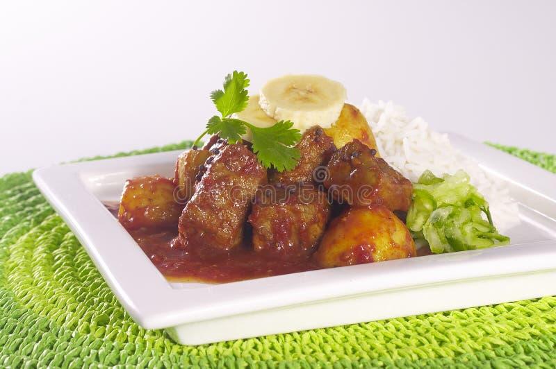 Curry royaltyfria foton