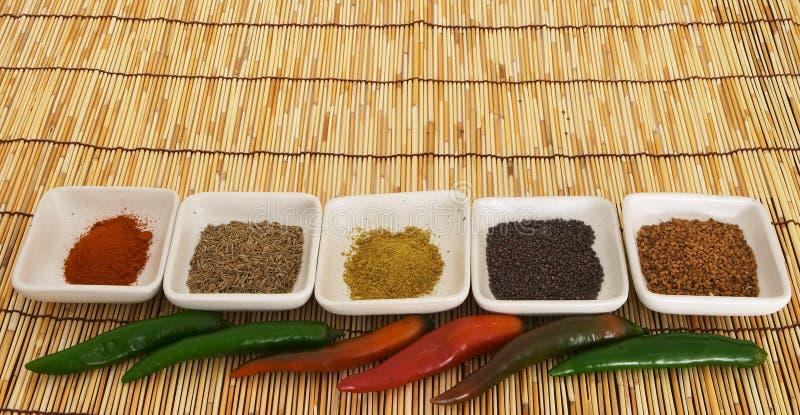 Curry 4 Przyprawy Zdjęcia Royalty Free