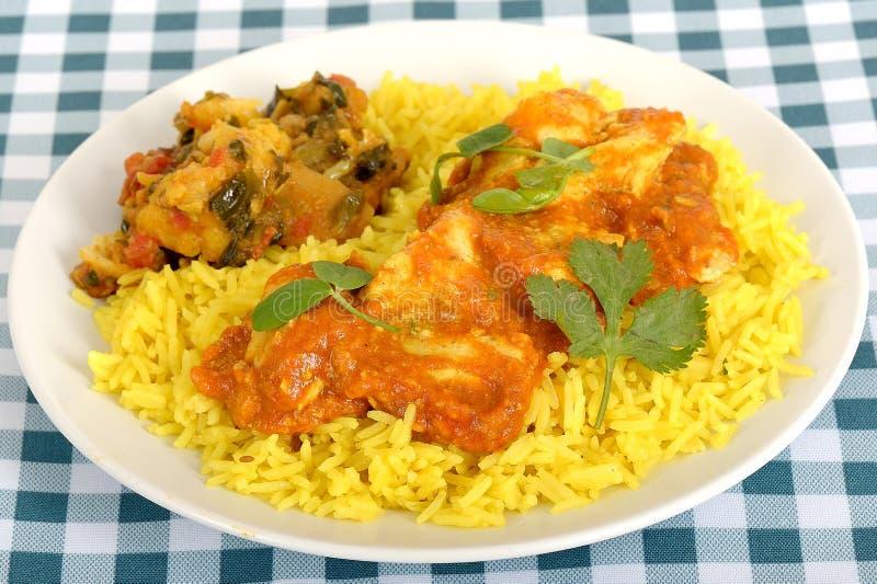 Curry de Madras del pollo en una placa con arroz imagen de archivo