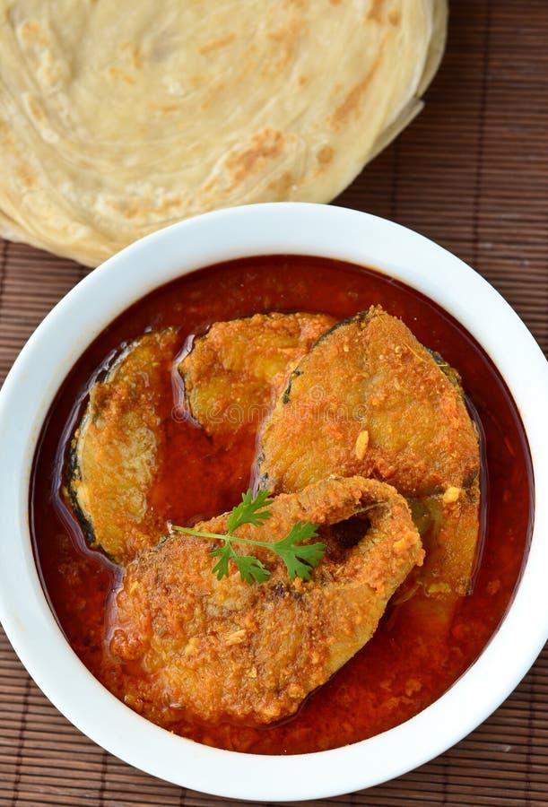 Curry dei pesci fotografia stock libera da diritti