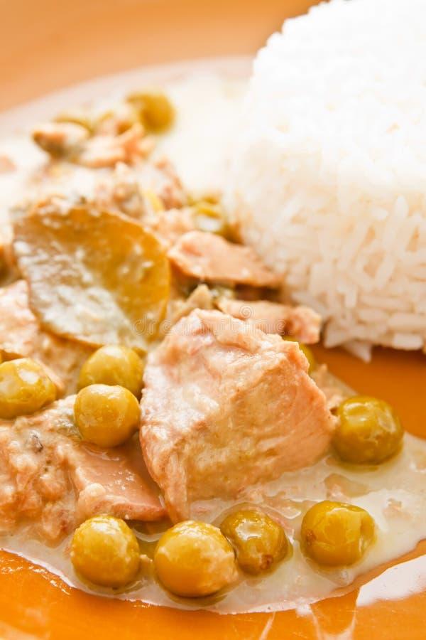 Curry del atún en estilo tailandés foto de archivo libre de regalías