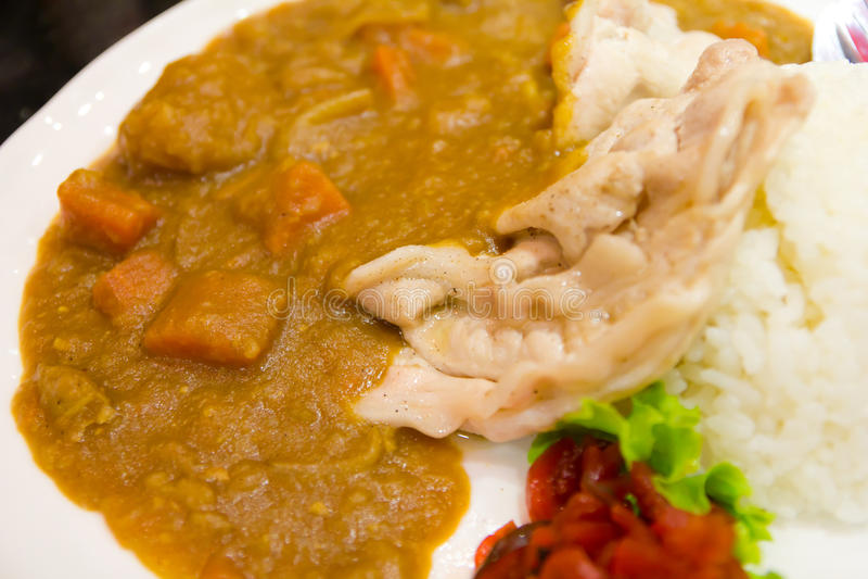 Curry del cerdo con arroz imagen de archivo