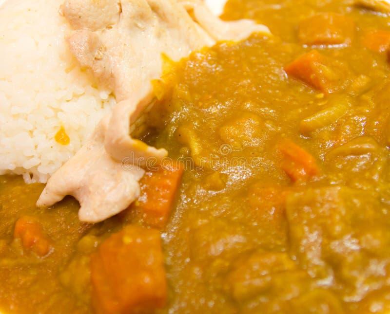 Curry del cerdo con arroz foto de archivo libre de regalías