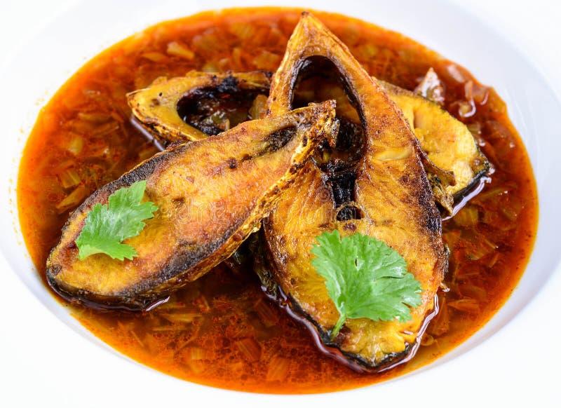 Curry del pesce fotografia stock
