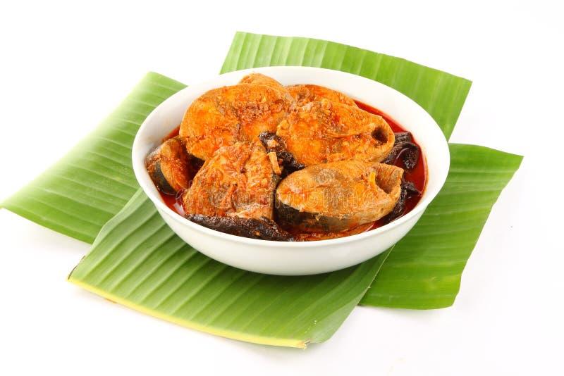 Curry del pesce di stile del Kerala con freddo rosso e le erbe immagini stock