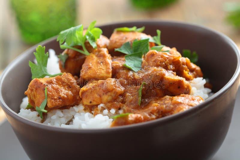 Curry del pollo con arroz foto de archivo