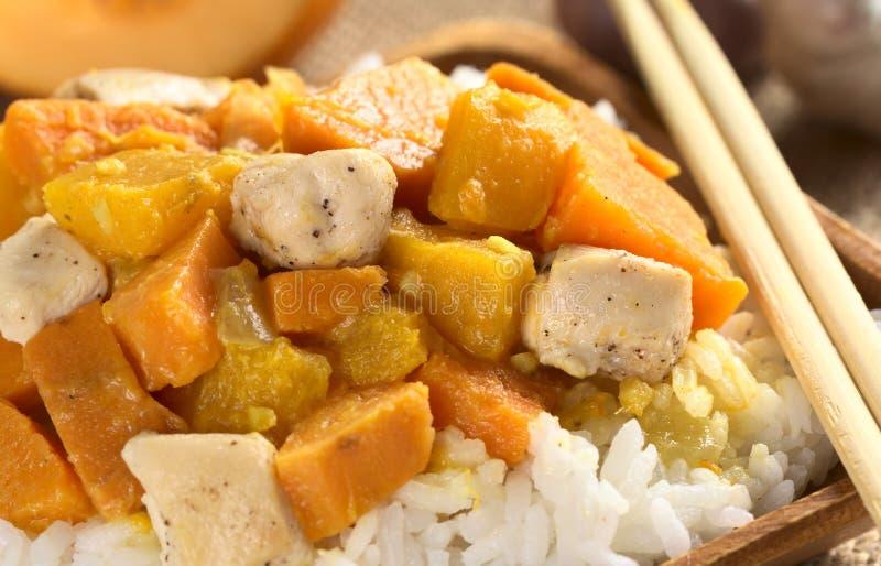 Curry del pollo, de la calabaza y de la patata dulce imagen de archivo