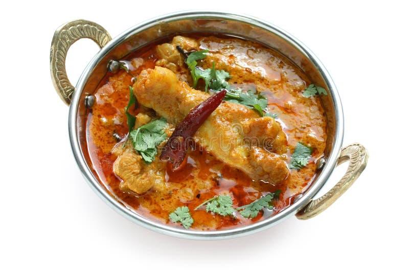 Curry del pollo, piatto indiano fotografie stock libere da diritti