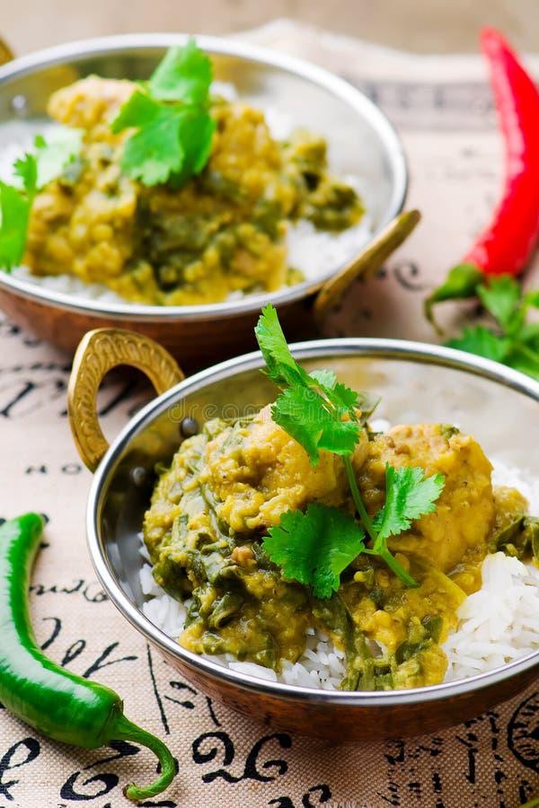 Curry del pollo y de la espinaca Cocina india imagen de archivo